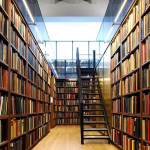 Библиотеки Лебяжьего